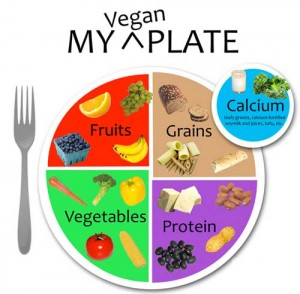 Diabetes - Cause, Prevention, Treatment and Reversal with a Plant Based Diet