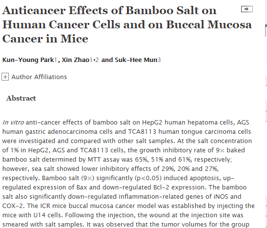 bamboo salt cancer journal 2